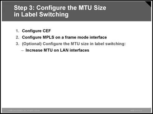 Configuring the MTU Size in Label Switching - Wide Area Networks